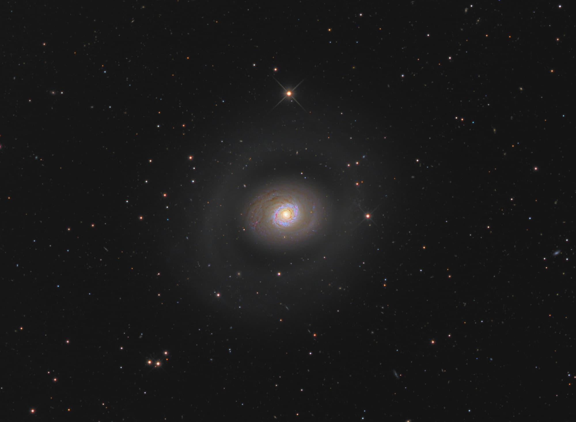 Messier 94 im Detail