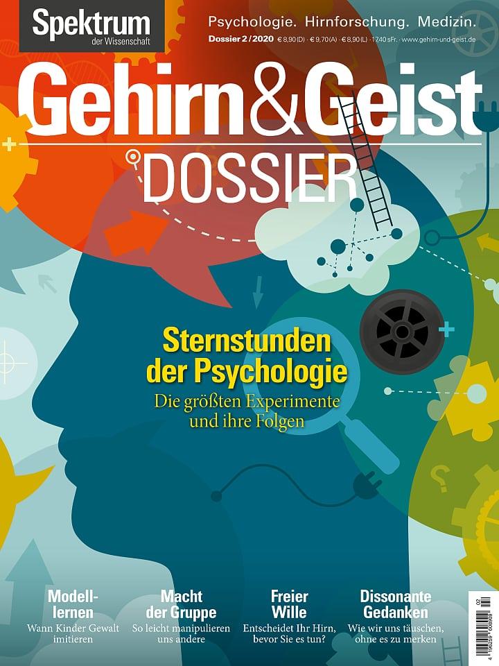 جلد بروشور پرونده برای مغز و ذهن 2/2020 لحظات عالی در روانشناسی