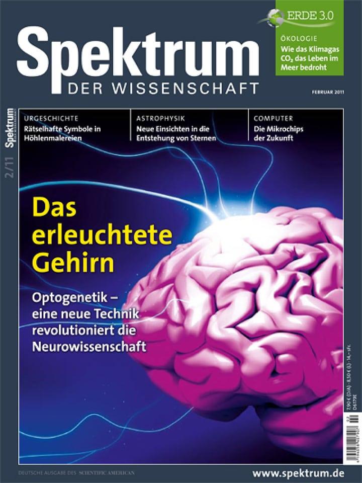 Medizin: Radikale Therapie von Schlaganfällen - Spektrum der ...