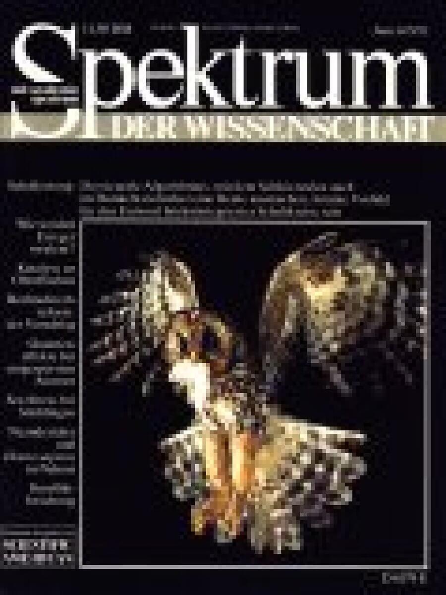 6 / 1993 - Spektrum der Wissenschaft