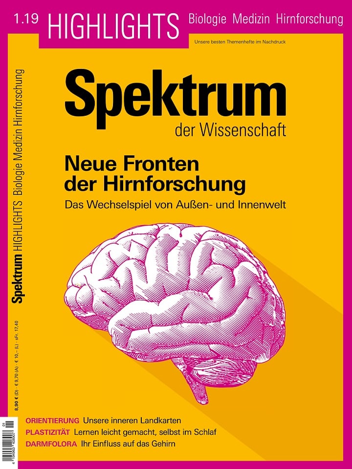 Heftcover Spektrum der Wissenschaft Highlights 1/2019 Neue Fronten der Hirnforschung