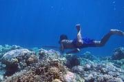 Indonesien: Genetische Anpassung hilft Seenomaden beim Tauchen