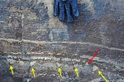 Paläontologie: Sind frühe Lebensspuren nur komische Gesteine?