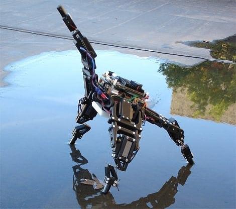 Robotik: Erkenne dich selbst! - Spektrum der Wissenschaft