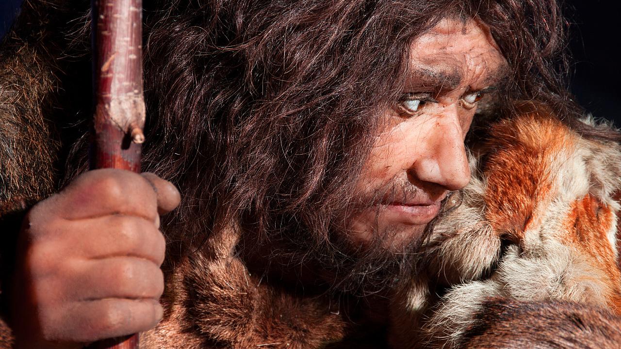 Neandertaler: Neandertaler haben Sprache wahrscheinlich gut hören können