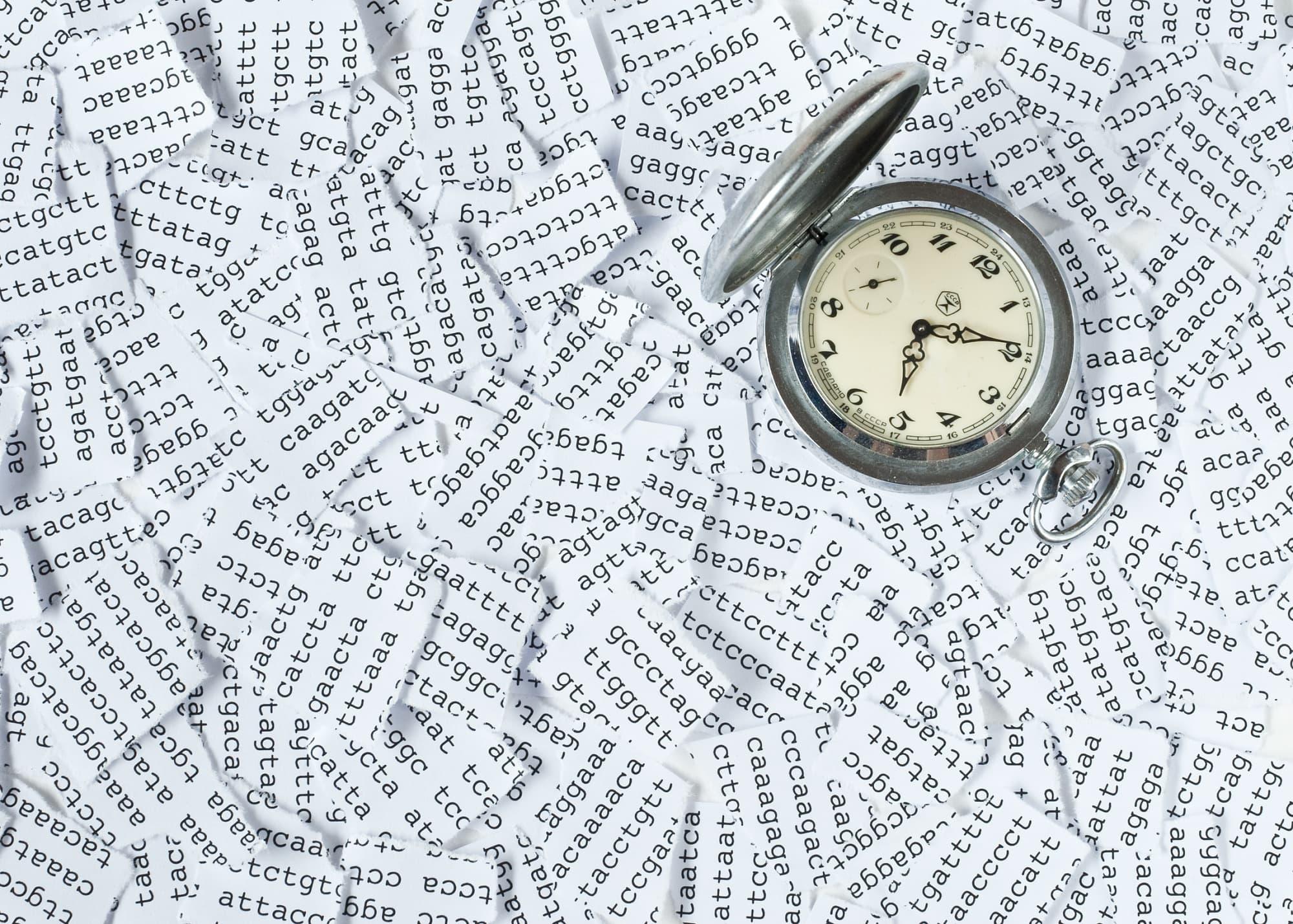 Epigenetische Uhr verrät unser Alter auf wenige Monate genau ...