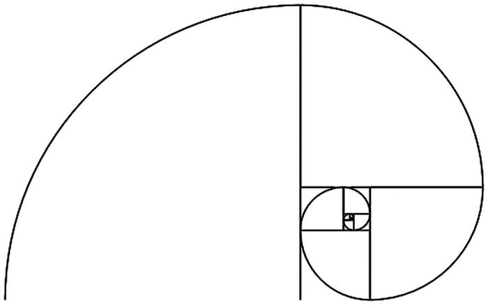 fibonacci folge und die wachstumsprozesse der natur. Black Bedroom Furniture Sets. Home Design Ideas