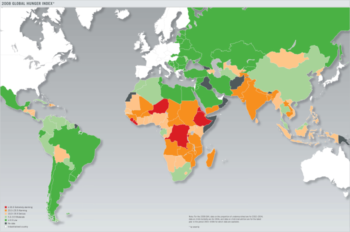 Globaler Hunger-Index 2008