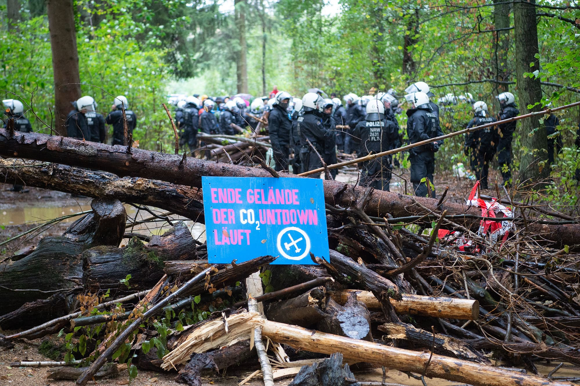 Image result for wikimedia commons hambacher wald