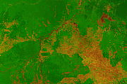 Satellitenbild Vegetation Brasilien