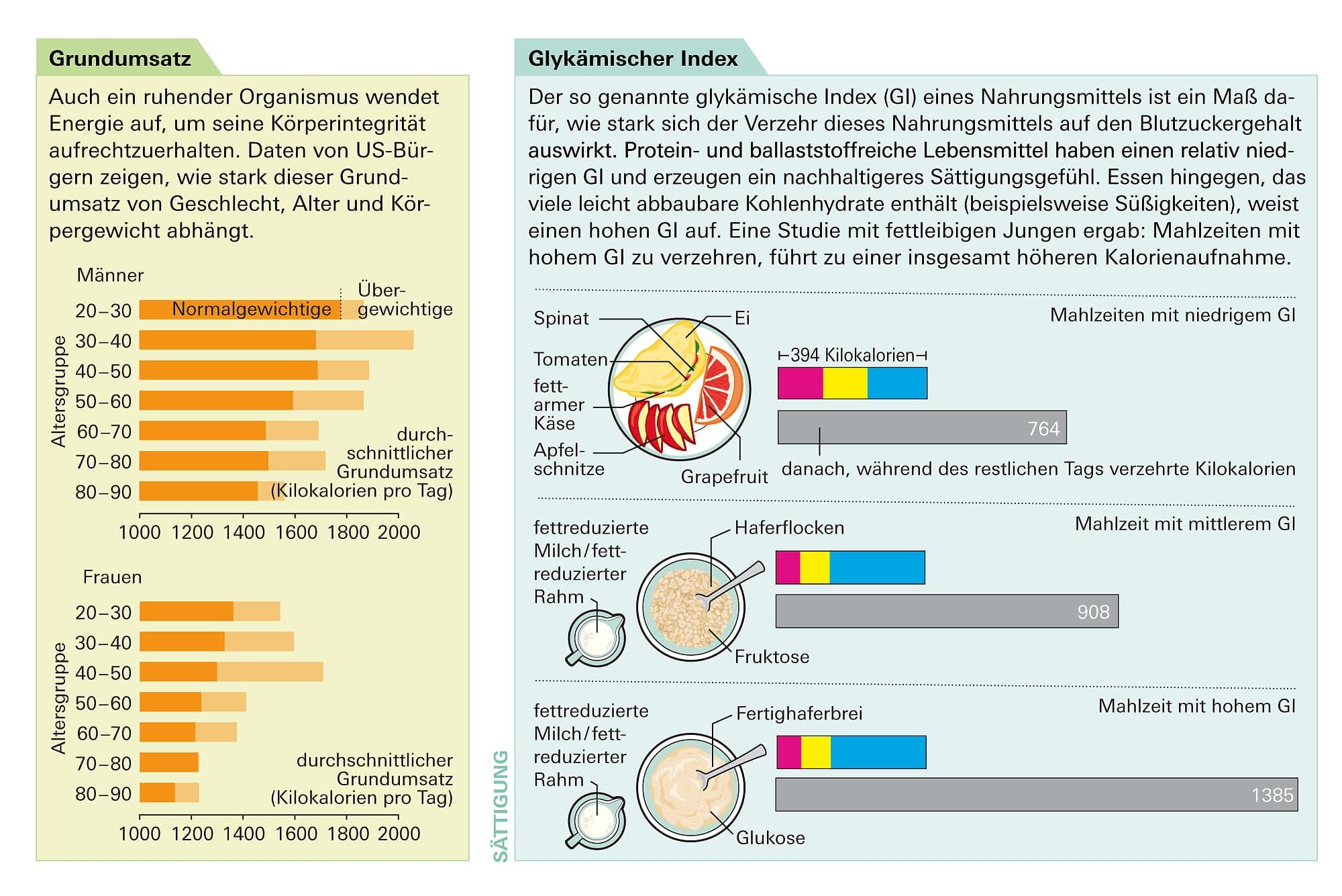 Medizin: Was unser Körpergewicht bestimmt - Spektrum der Wissenschaft