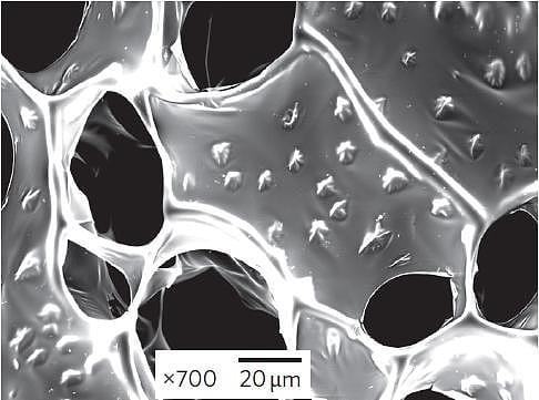 Kunstgewebe: Gold-Nanodrähte verbessern künstliches Herzgewebe ...