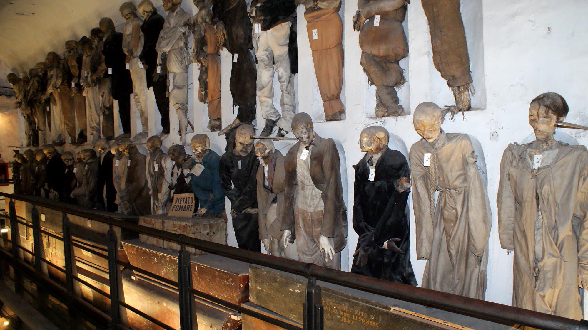 Mumienforschung: Sehen und gesehen werden - Spektrum der