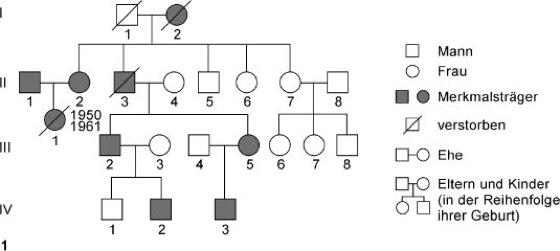 Genetik Aufgaben Und Ubungen Zur Stammbaumanalyse 5