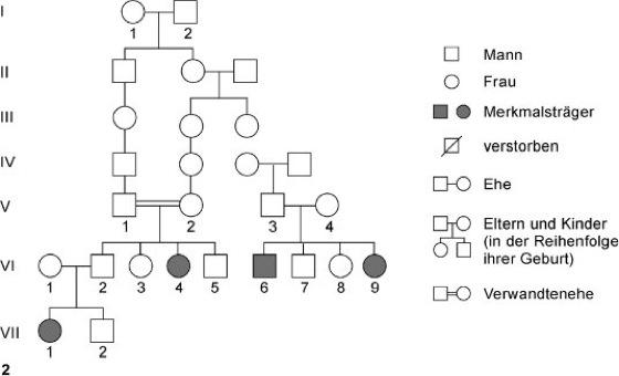 Genetik Aufgaben Und Ubungen Zur Stammbaumanalyse 2