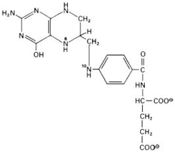 Tetrahydrofolat