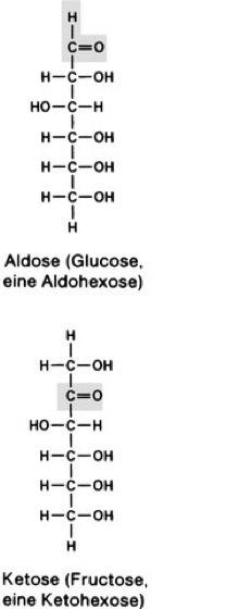 Aldosen Lexikon Der Biologie