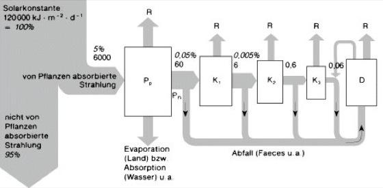 Energieflußdiagramm