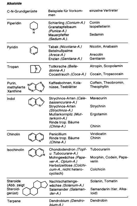 alkaloide lexikon der biologie - Einkeimblattrige Pflanzen Beispiele