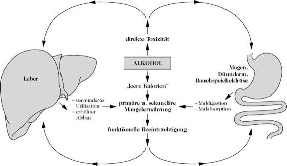 Der Alkoholismus und die Blutschande der Bereich 4