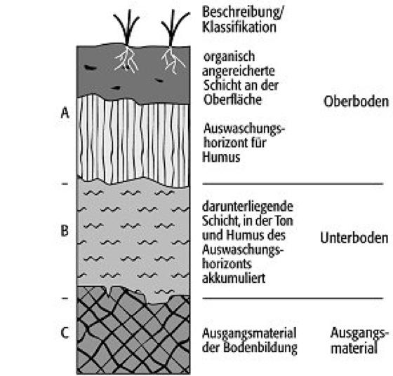 Boden lexikon der geowissenschaften for Definition von boden