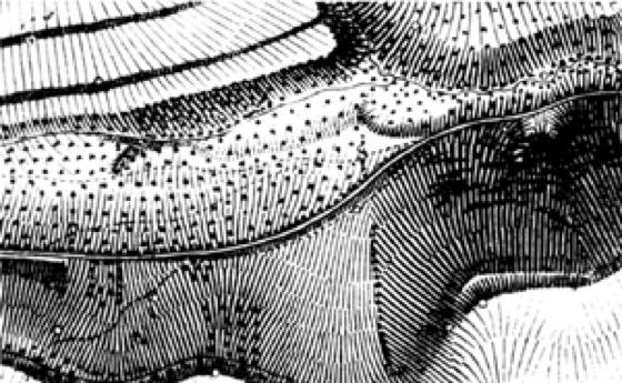 Reliefdarstellung - Lexikon der Kartographie und Geomatik