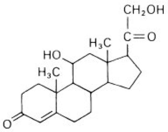 kortikosteroide kortison