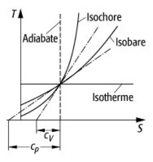 T-S-Diagramm - Lexikon der Physik