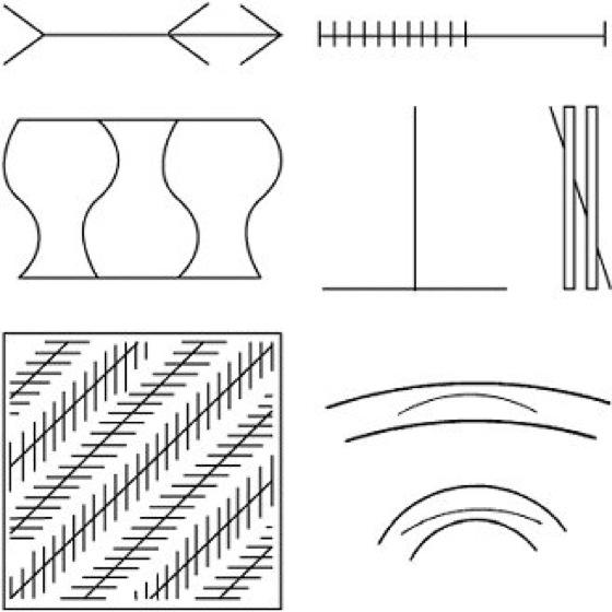 geometrischoptische t228uschungen lexikon der psychologie