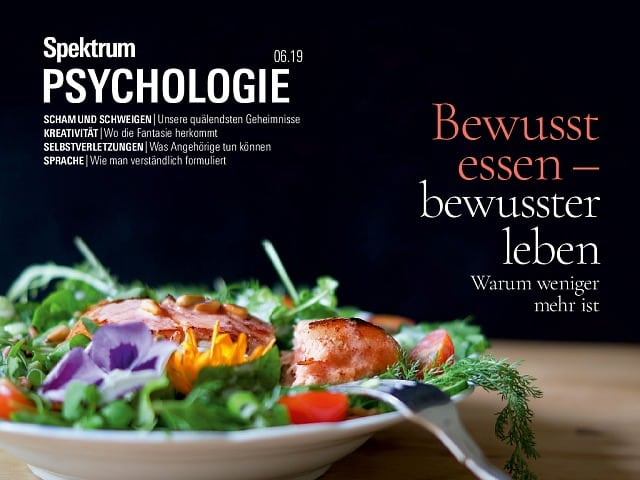 Spektrum Psychologie:  6/2019 (November/Dezember)