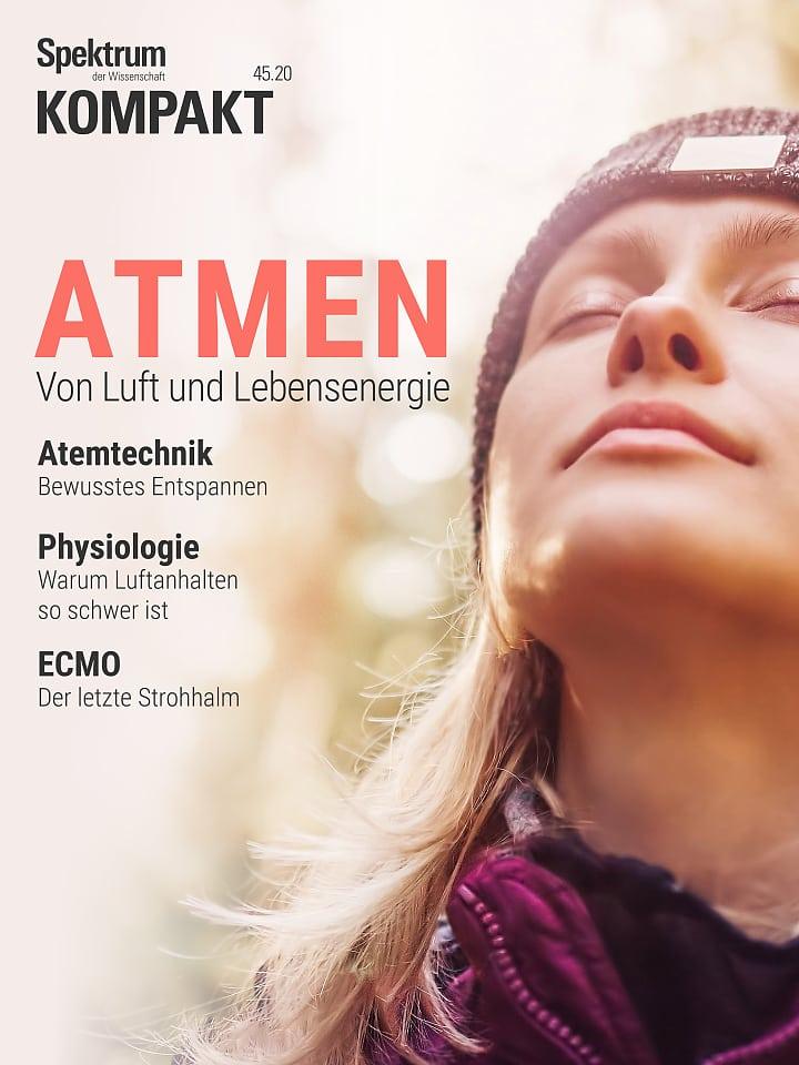 Espectro en resumen: respiración - del aire y la energía vital