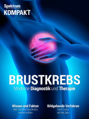 Cover Spektrum Kompakt:  Brustkrebs – Moderne Diagnostik und Therapie