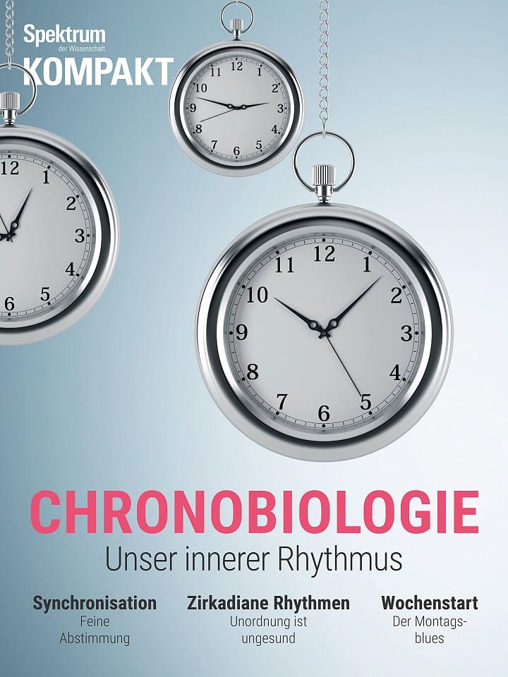 طیف فشرده: کرونوبیولوژی - ریتم درونی ما