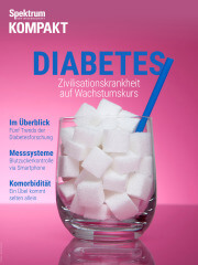 Cover Spektrum Kompakt: Diabetes – Zivilisationskrankheit auf Wachstumskurs