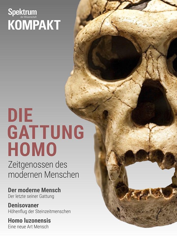 Acuerdo de espectro: humanidad - contemporáneos del hombre moderno
