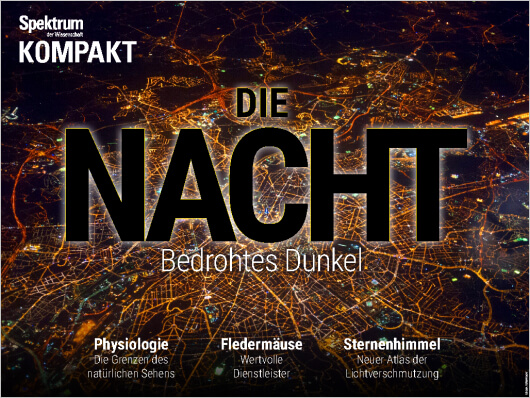 Cover Die Nacht - Bedrohtes Dunkel