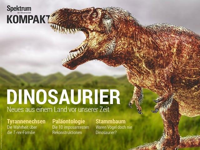 Die Evolution Der Vögel Und Dinosaurier Spektrum Der Wissenschaft