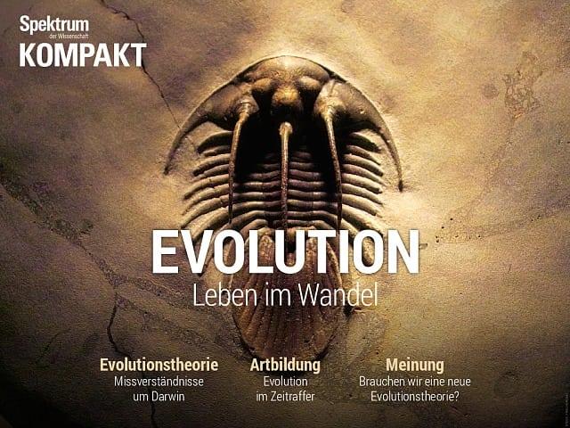 طیف فشرده: تکامل - زندگی در حال گذار