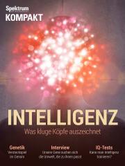 Cover Spektrum Kompakt:  Intelligenz – Was kluge Köpfe auszeichnet