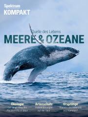 Cover Spektrum Kompakt:  Meere und Ozeane – Quelle des Lebens