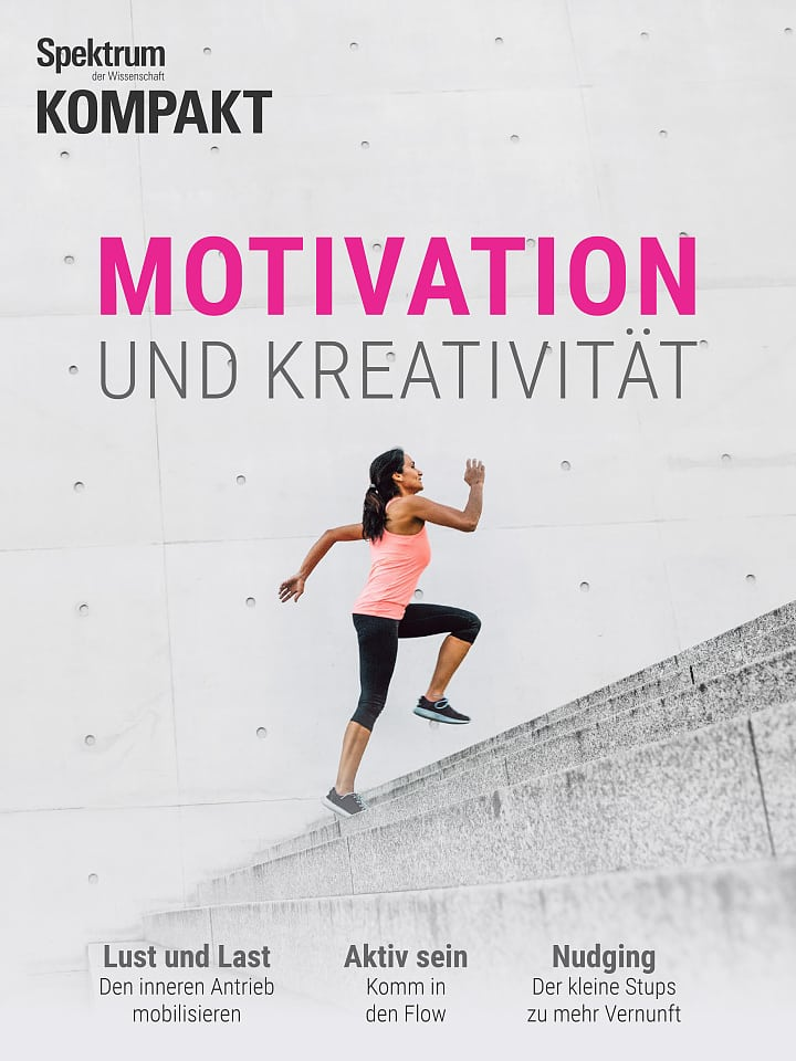 Spektrum Kompakt:  Motivation und Kreativität