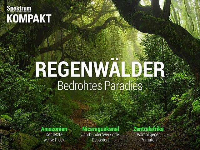 Spektrum Kompakt: Regenwälder – Bedrohtes Paradies