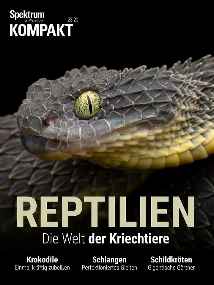Acuerdo de espectro: reptiles - un herpetólogo