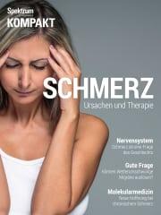 Cover Spektrum Kompakt:  Schmerz – Ursachen und Therapie