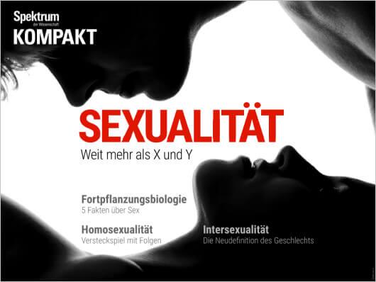 Fakten über Männer und Sex