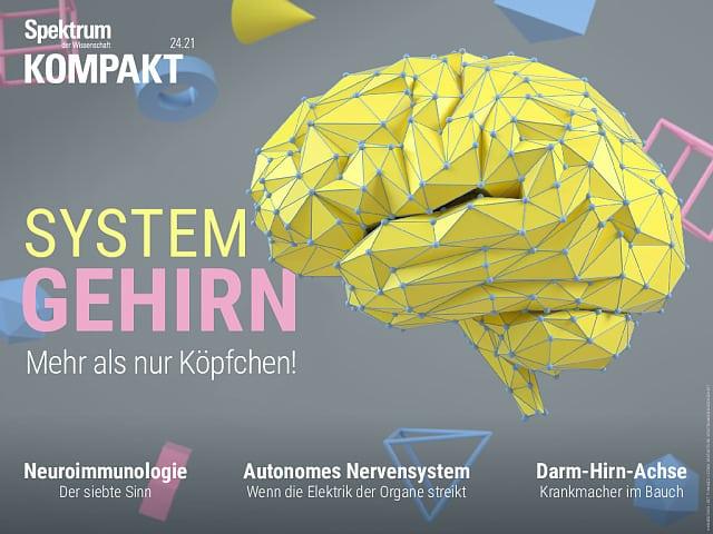 طیف فشرده: مغز سیستمیک - بیشتر از مغز!