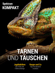 Cover Spektrum Kompakt: Tarnen und Täuschen – Wie Tiere und Pflanzen tricksen