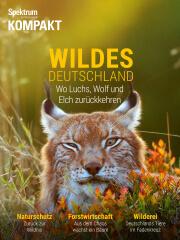 Cover Spektrum Kompakt:  Wildes Deutschland – Wo Luchs, Wolf und Elch zurückkehren