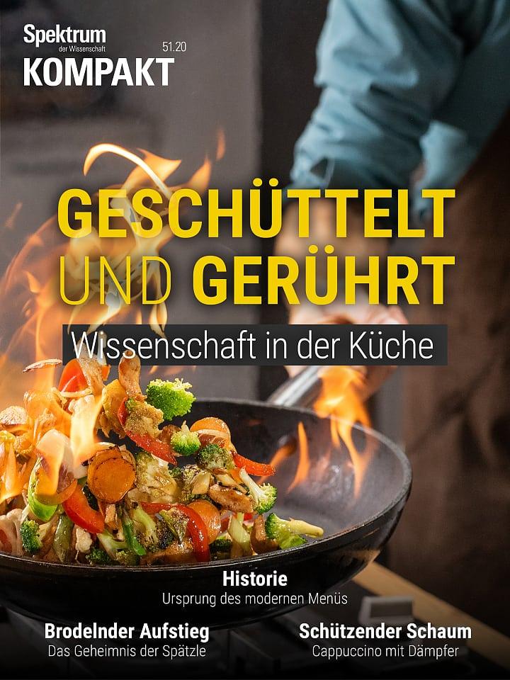 Pressione dello spettro: vibrare e mescolare: la scienza in cucina