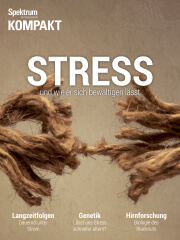 Cover Spektrum Ratgeber:  Stress – und wie er sich bewältigen lässt
